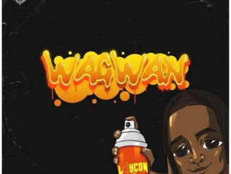 Download MP3 : Laycon - Wagwan